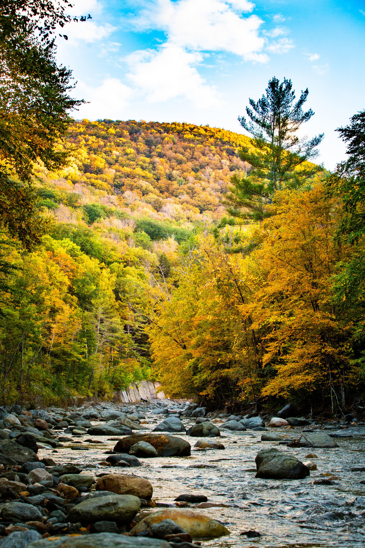 Hall-Potvin Photography Vermont Fall Landscape Photographer-11