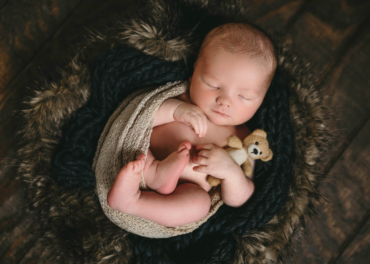 Dallas newborn with Teddy