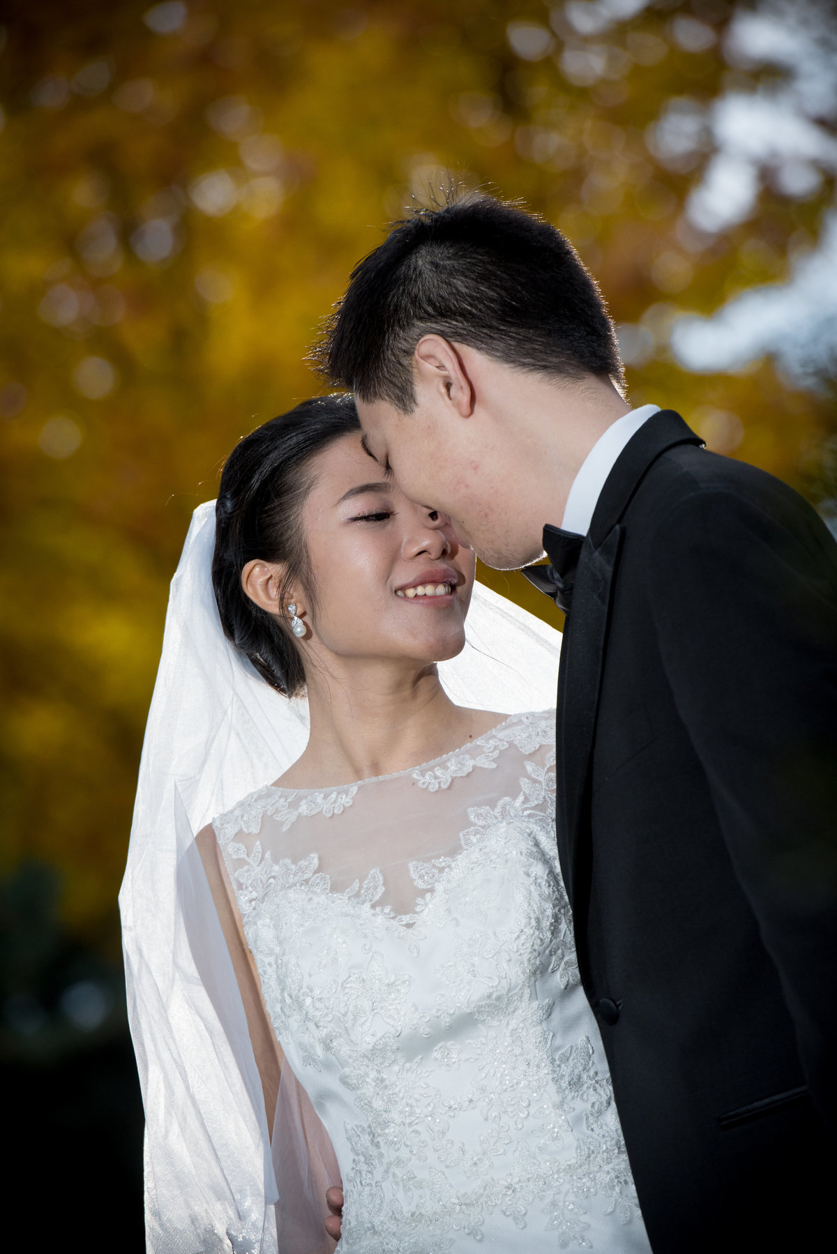 Bride and groom rest their heads together in front of a tree of yellow autumn leaves