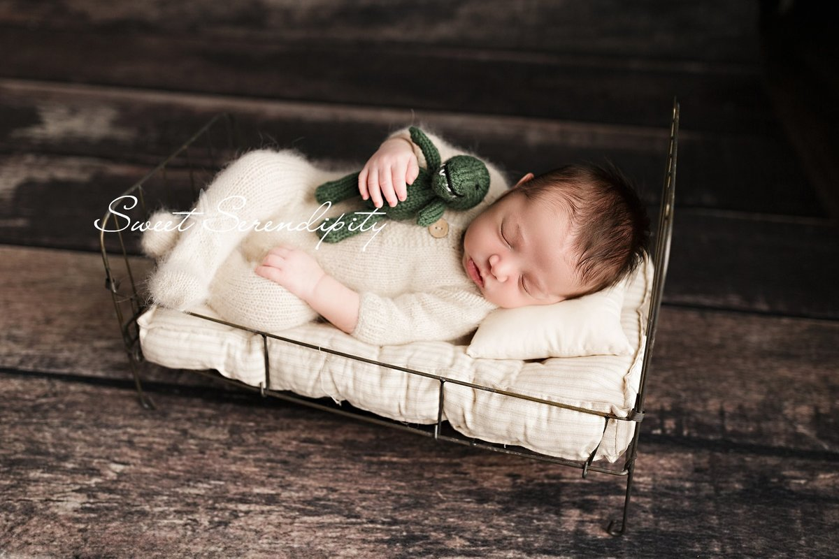 newborn photography in gainesville_0010