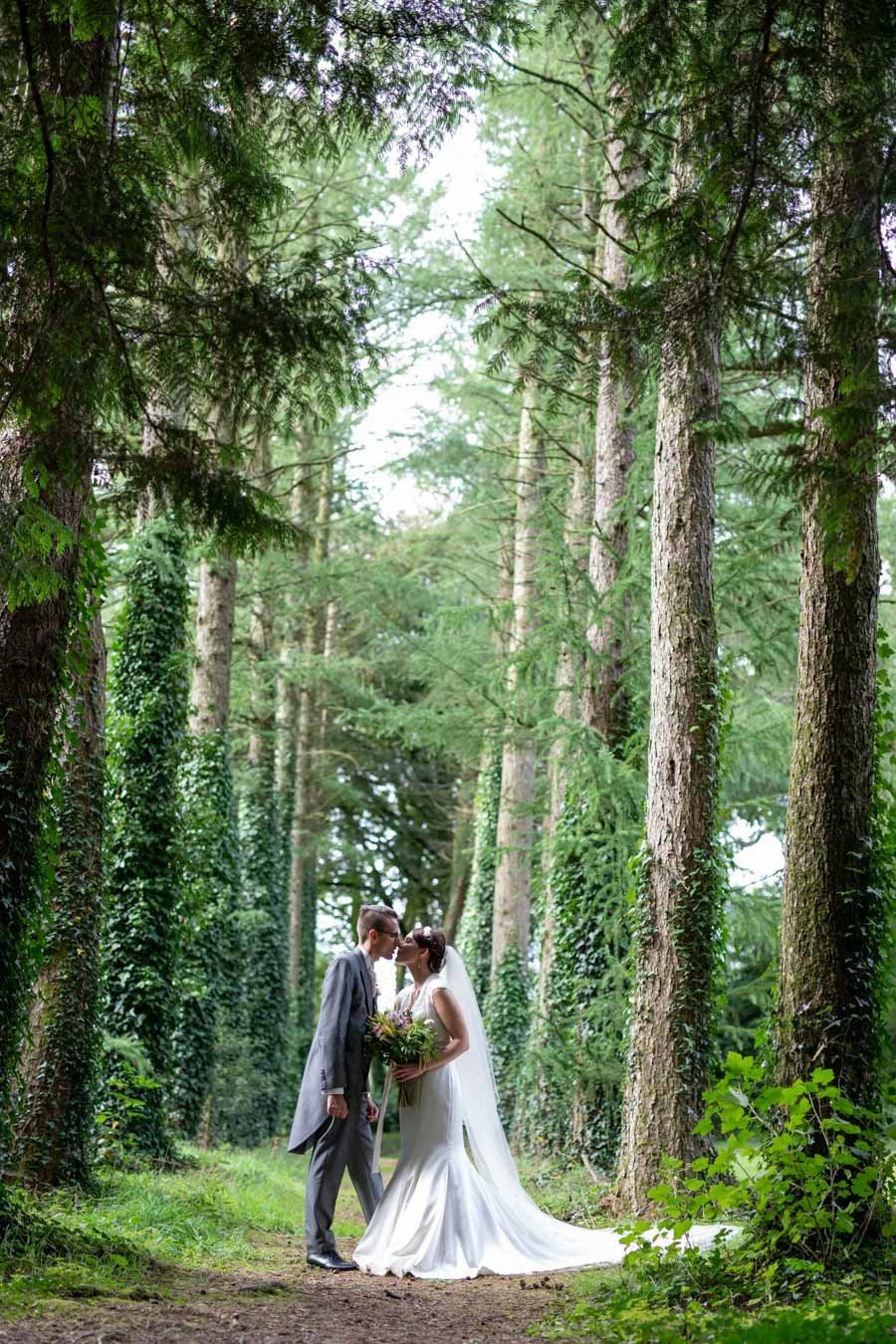 Bride and Groom in the tree avenue at Coombe Trenchard Devon