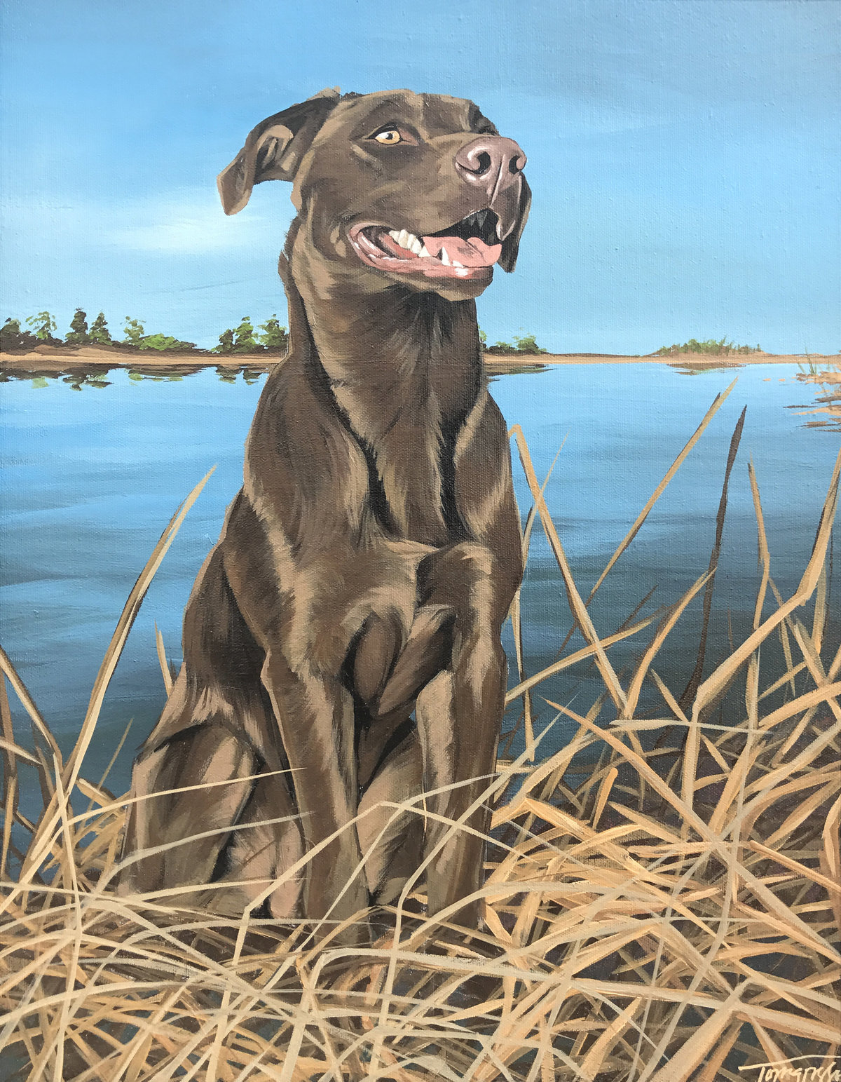 Torregrossa Fine Art Custom Pet Portrait by Stephanie T Gaffney Chocolate Lab