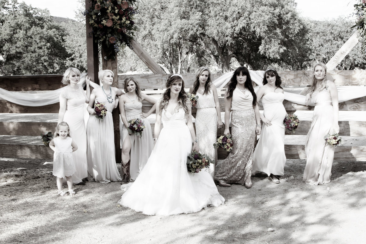bridesmaids vintage, bridesmaids country