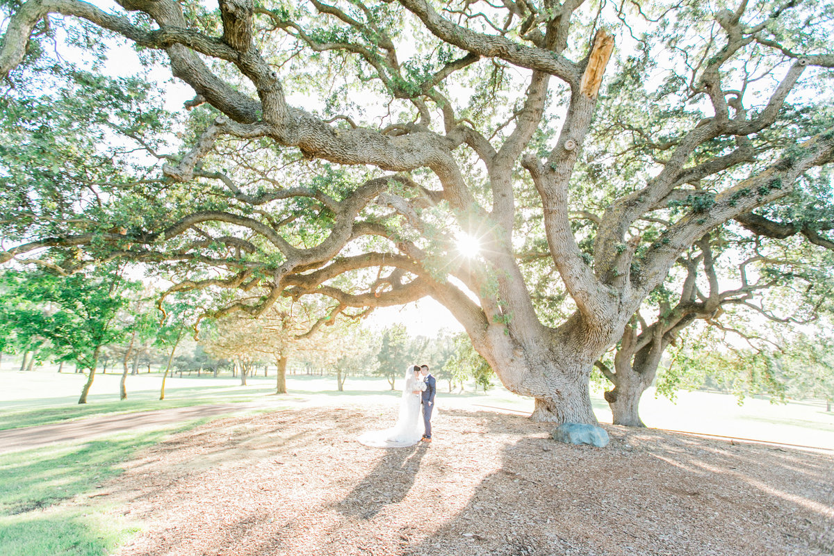 Boundary Oak Golf Course Wedding
