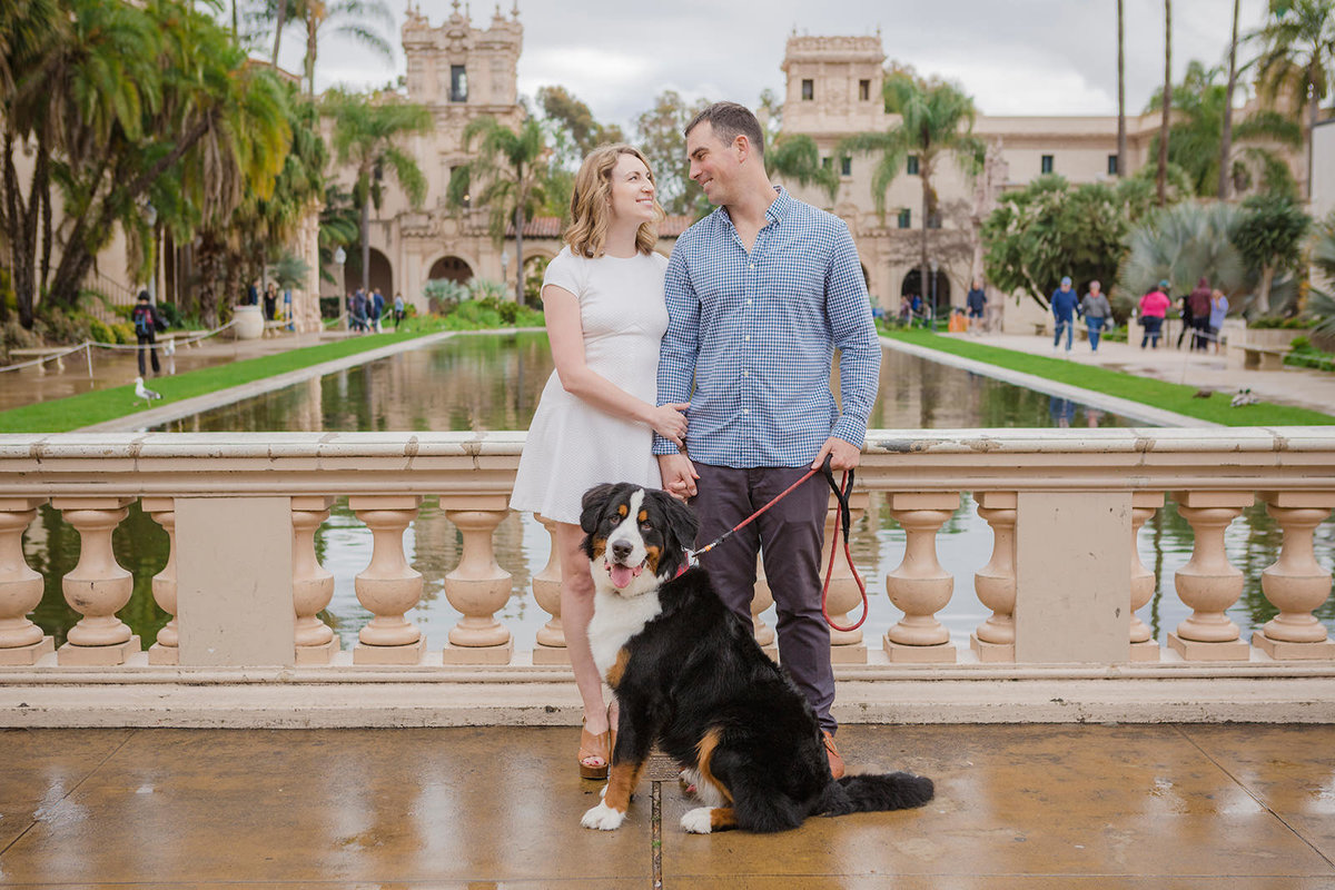 San-Diego-Pet-Family-Photographer-Ali-Peterson-Photography_0029
