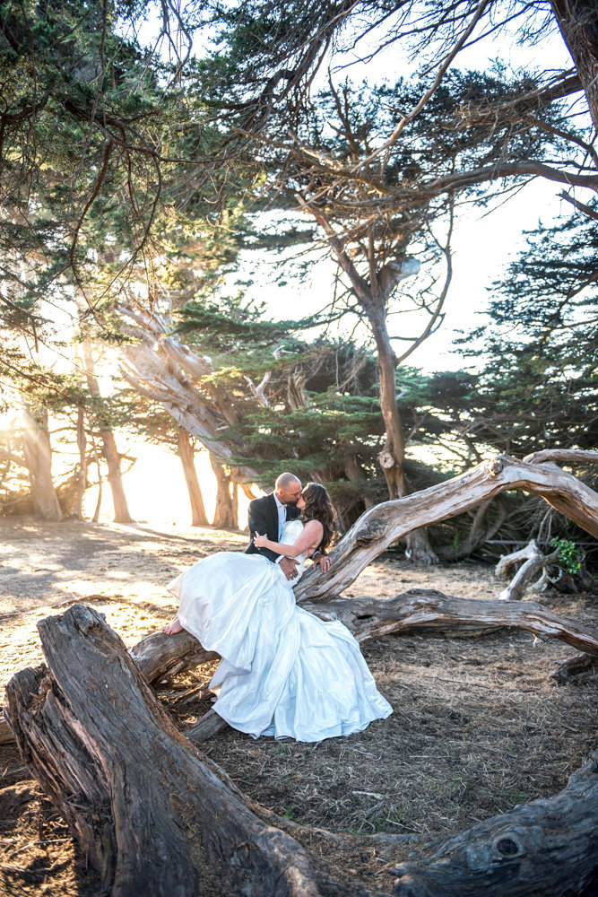 Cypress Grove Wedding, Mendocino, California
