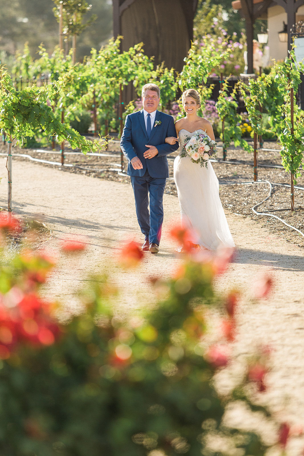60_Avensole_Winery_Weddings_Photographers