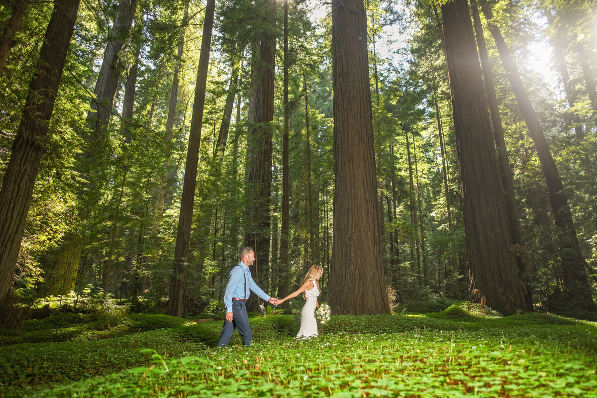 Humboldt-County-Elopement-Photographer-Redwoods-Avenue-of-the-Giants-Humboldt-Redwoods-Redwood-National-Park-Parky's-Pics-Coastal-Redwoods-Elopements-35