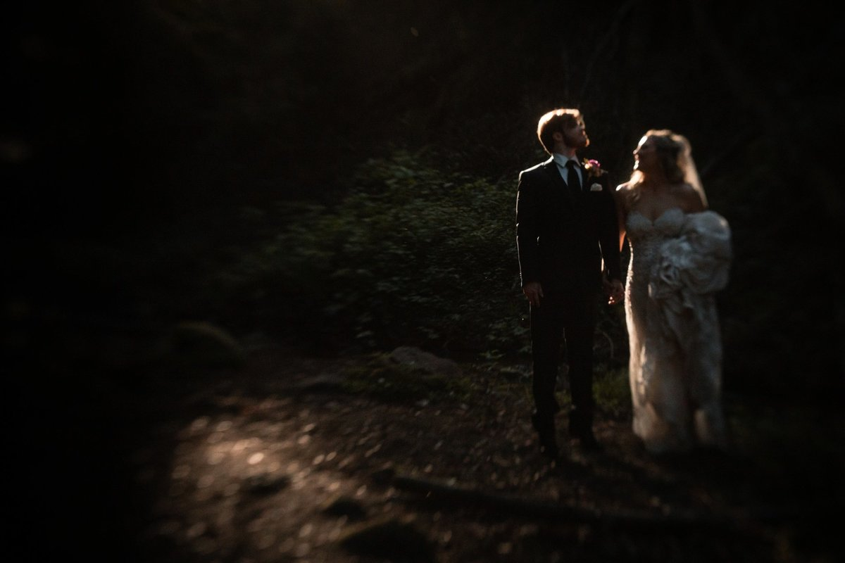 California Forest Wedding Photographer Saratoga Springs_0468