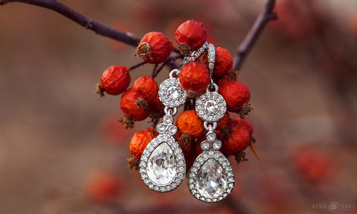 Colorado Springs Wedding photographer detail photo of drop earrings photographed on some bright red berries at a winter wedding