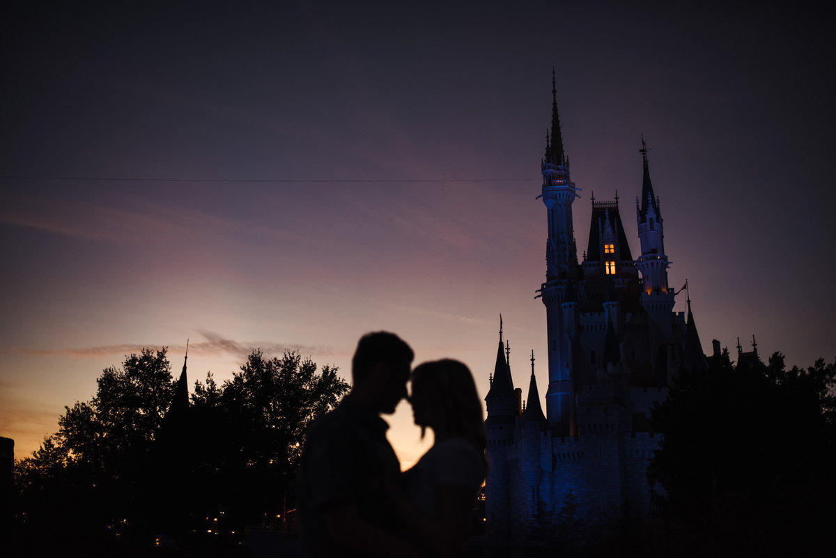 Ally & Brett's Disney Engagement Session (235 of 243)