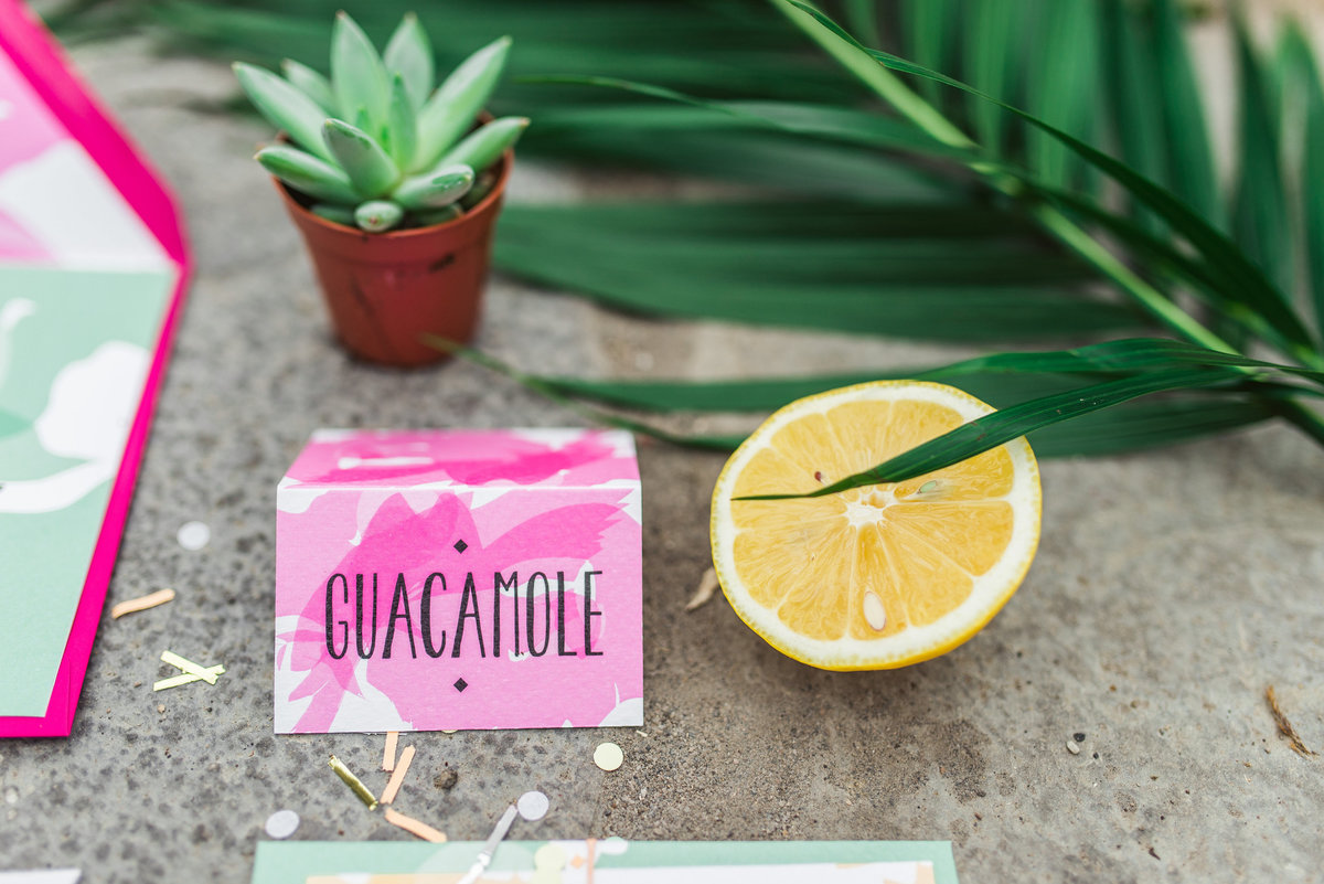 wedding-stationery-cinco-de-mayo-style-guacamole-sign-cincodemayo-cincodemayo2017-tacos-margaritas_t20_NQdVZ7