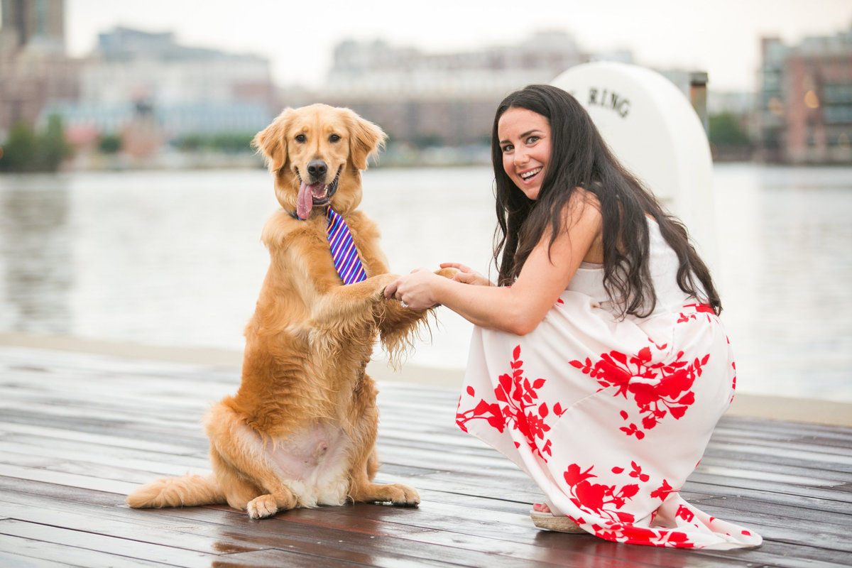 Dog-wearing-tie-Tide-Point-Engagement-Session