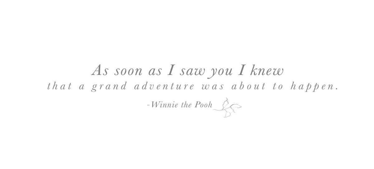 winniethepooh copy 2
