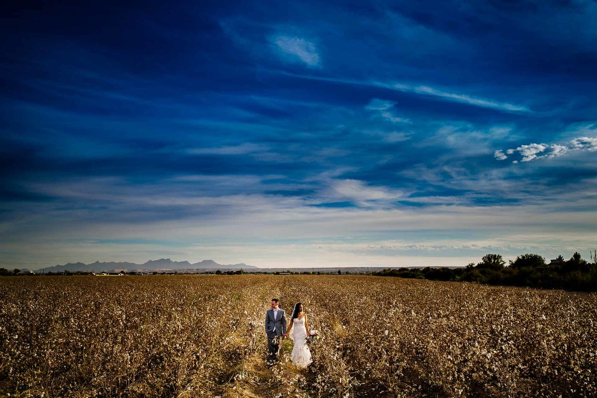 bride and groom in a cotton field near grace gardens in el paso by stephane lemaire photography