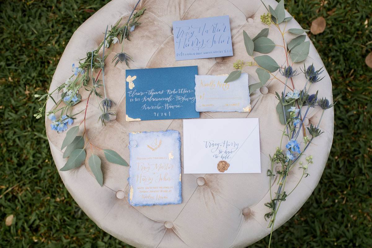 Powder Blue Styled Shoot _ Koolau Ballrooms _Vanessa Hicks Photography-2237