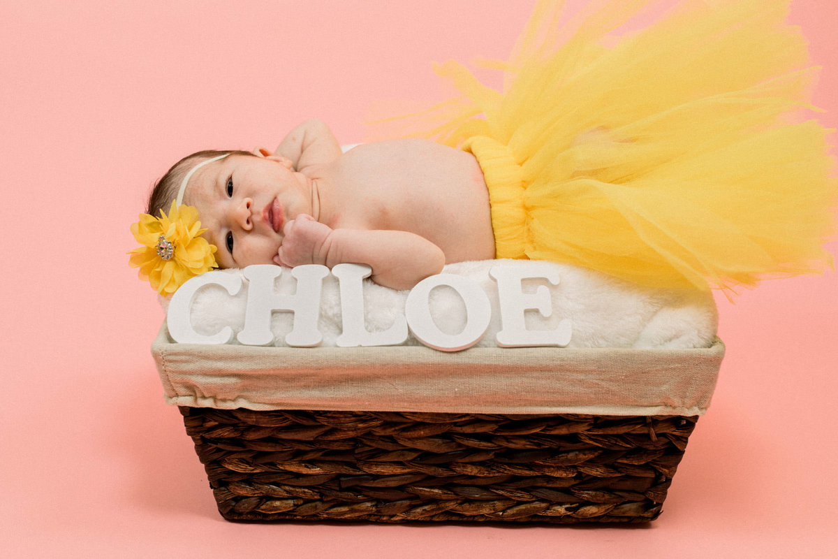 Maternity Photography Baby Photos Family_