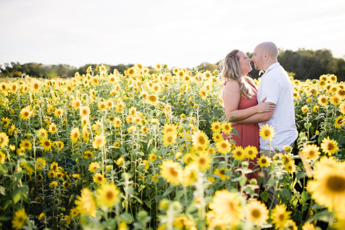 Couple close to each other in the middle of a sunflower field