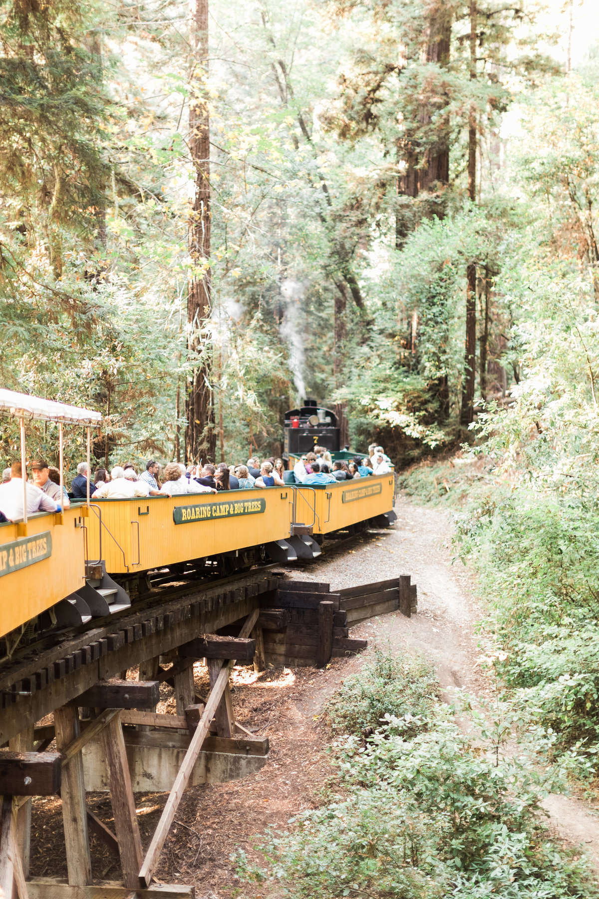 Roaring Camp Railroad Santa Cruz Wedding35