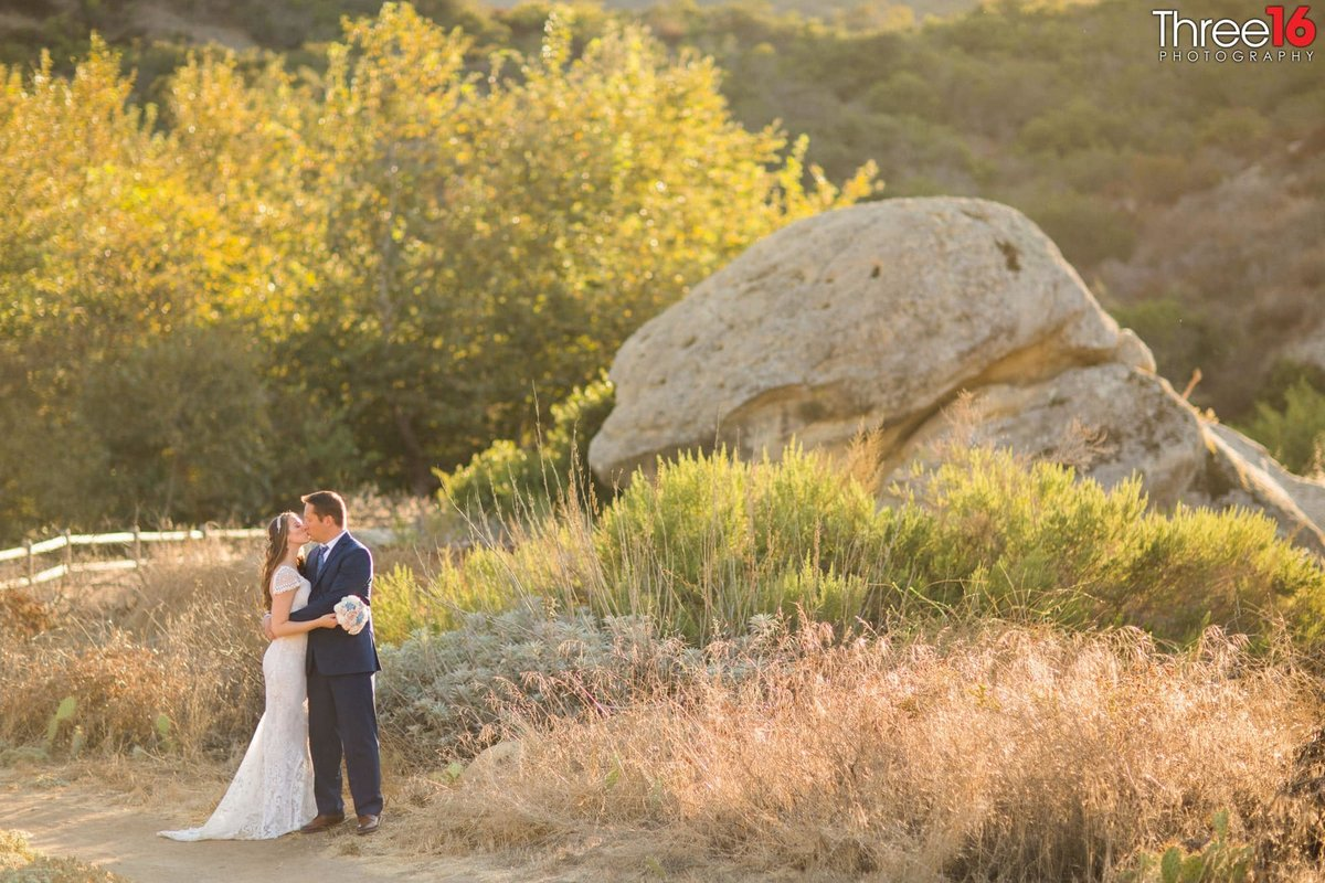 Laguna Coast Wilderness Park Engagement Beach Wedding_2