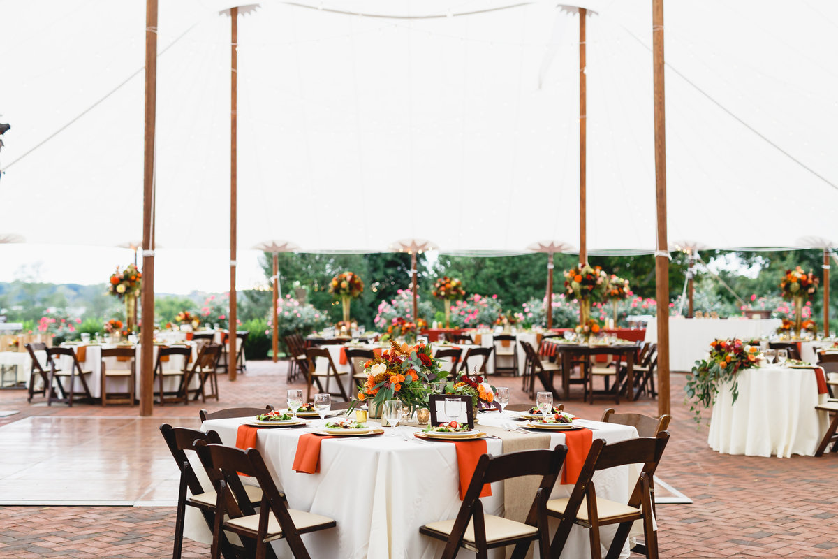Maryland Wedding Photographer Brittland Manor Ceremony Tented Reception 141