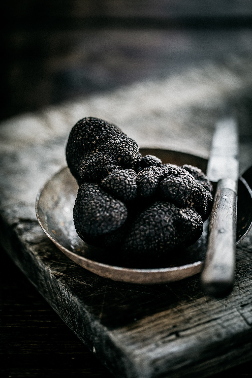 The Truffle Farm - Anisa Sabet - The Macadames - Food Travel Lifestyle Photographer-93