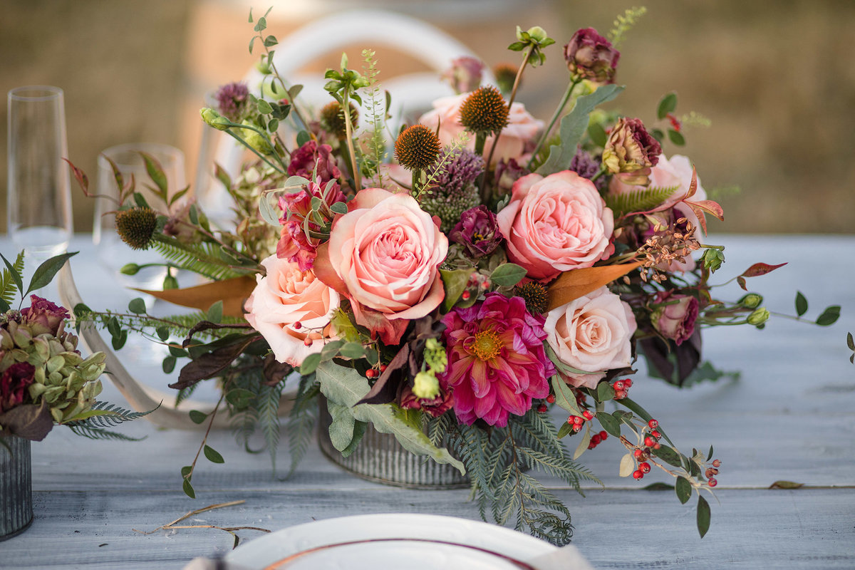 Everett Ranch Rocky Mountain Wedding Outdoor Barn Rustic Salida Colorado Alpaca Collegiate Peaks Vintage Ranch Fish Blush Rose Dried Florals Fall 005