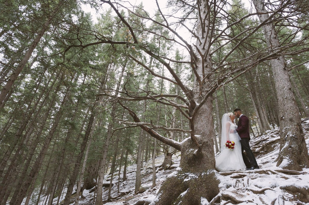 calgaryweddingphotographyinfiniteimages 366