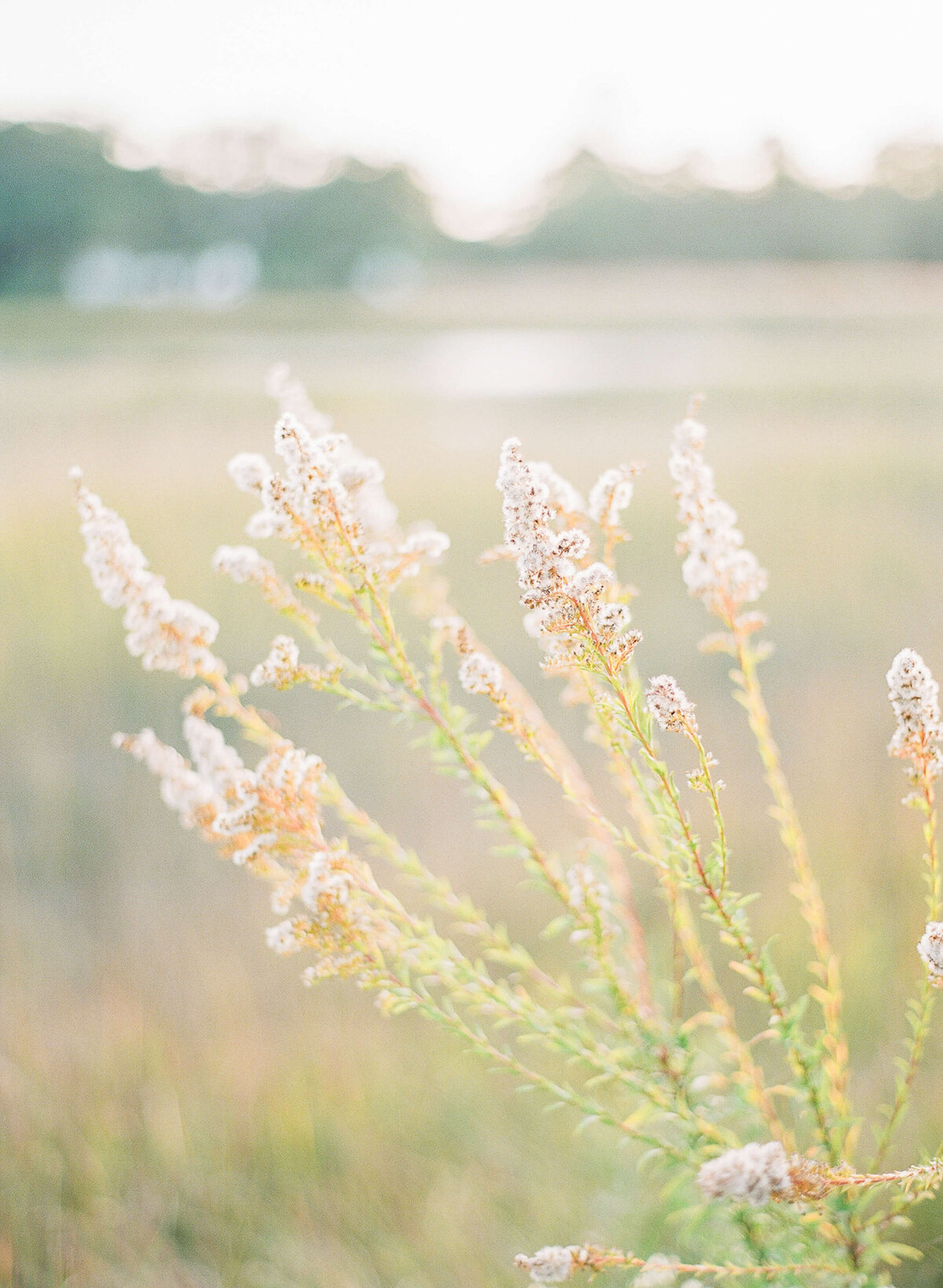 kiawah-river-wedding-clay-austin-photography-81