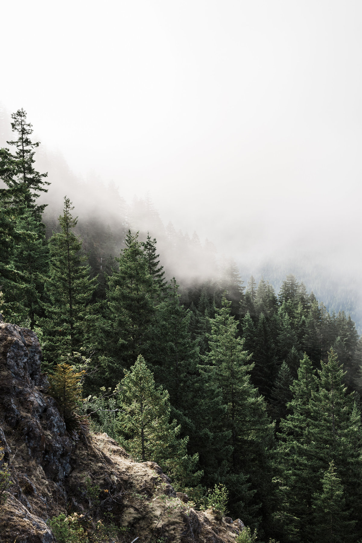 Adventure-Elopement-Photographer-Olympic-National-Park-14