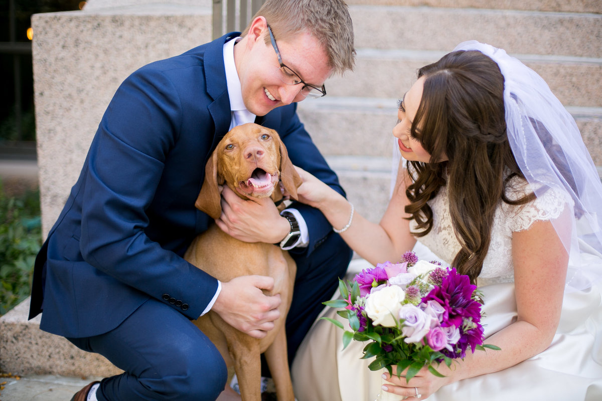 Bride and groom with their dog during their fort collins wedding