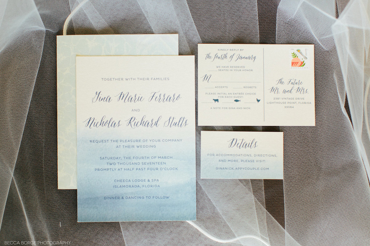 wedding invitations sitting on a veil