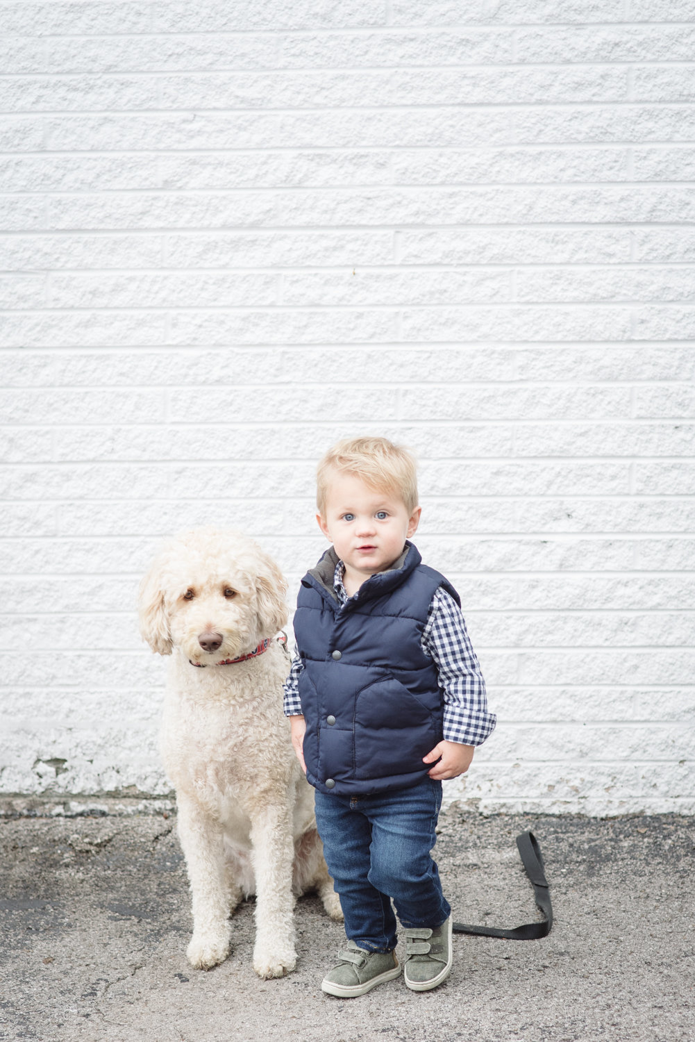 Toddler Boy wearing Back to the Future like clothing beside his pet golden doodle standing in front of a white brick wall