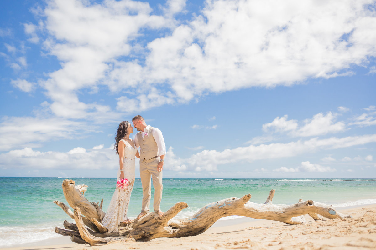 Wedding Photographer on Maui