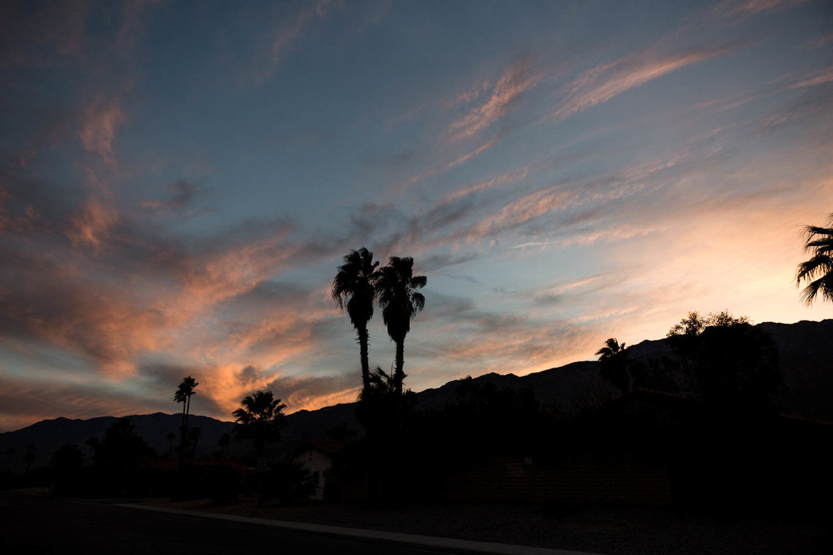 travel-palm-springs-california-danielle-motif-photography-11