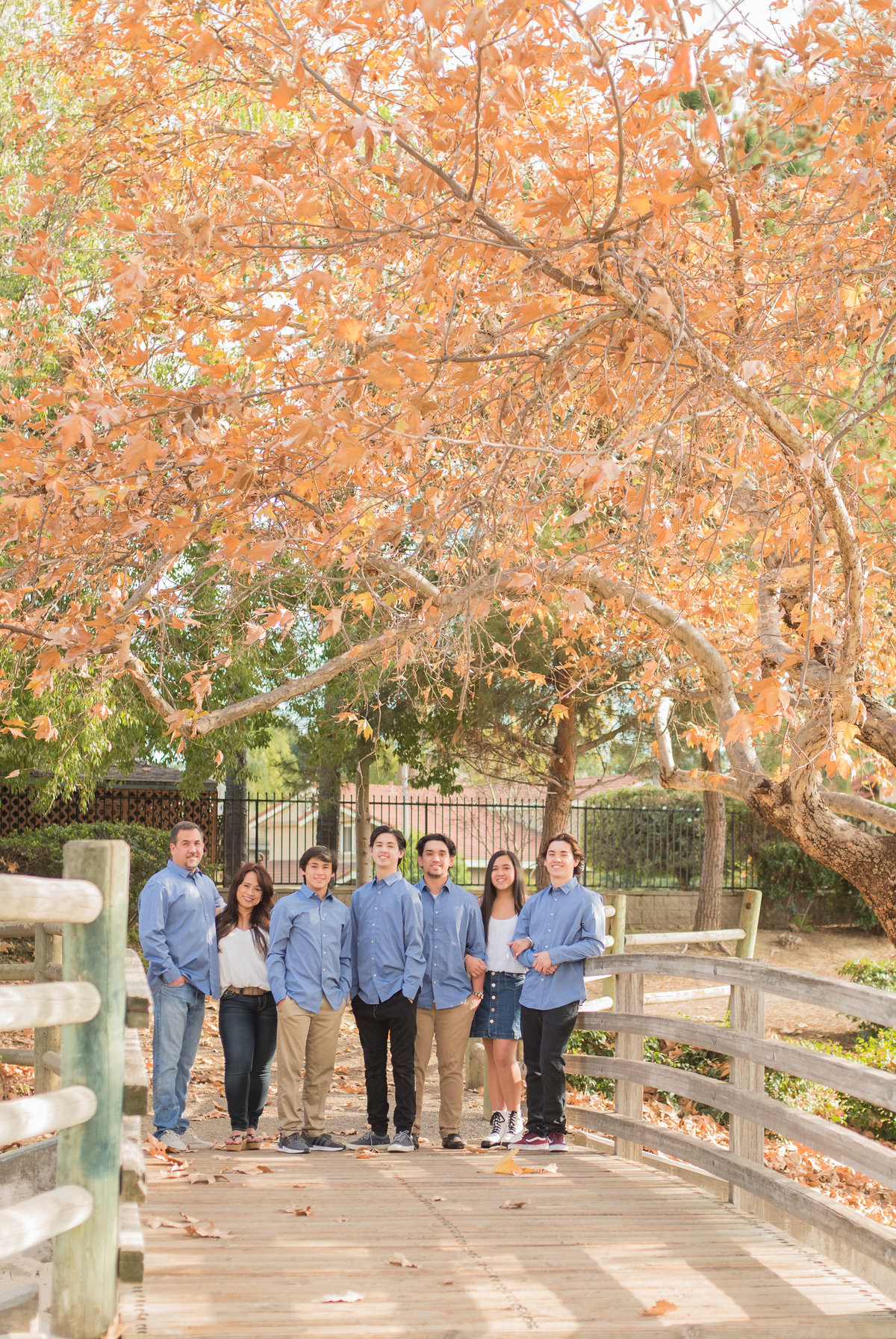 Outdoor Family Photos at Park Large Group