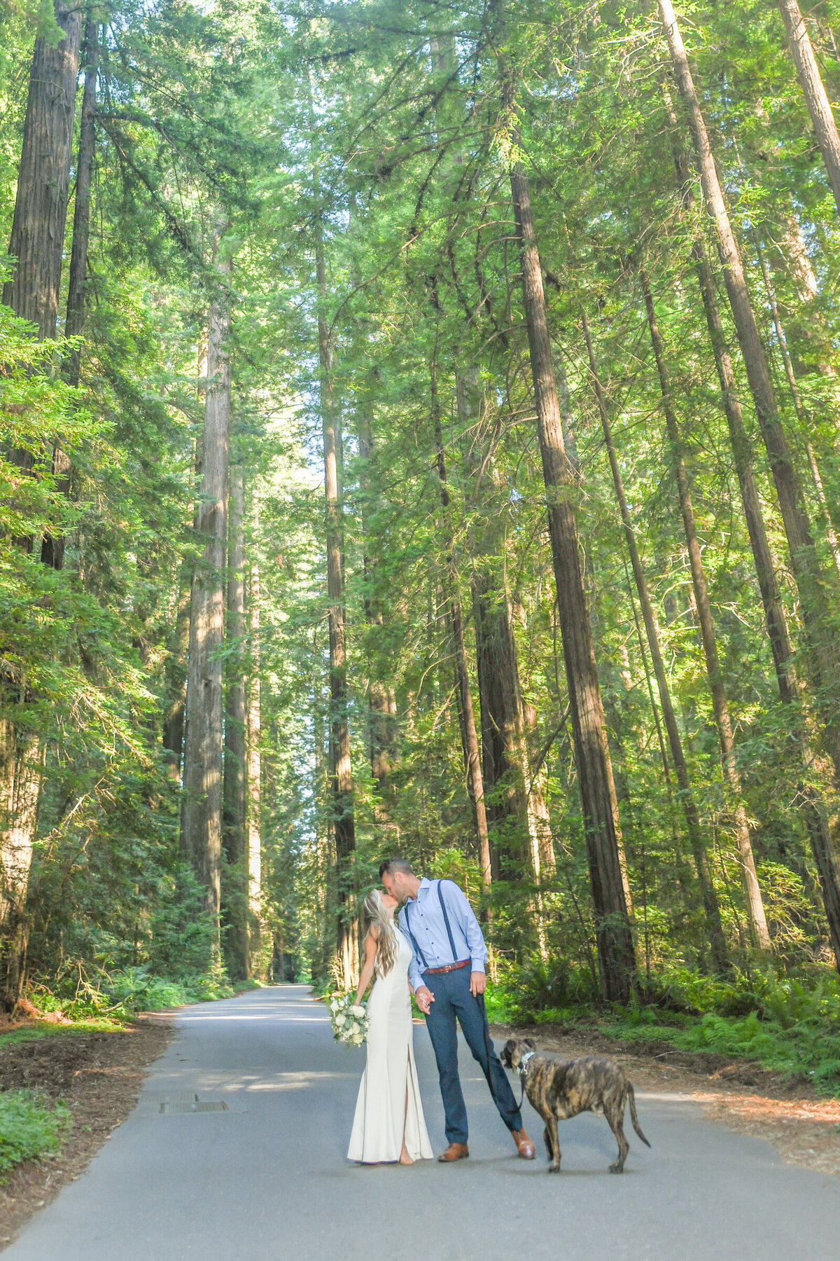 Humboldt-County-Elopement-Photographer-Redwoods-Avenue-of-the-Giants-Humboldt-Redwoods-Redwood-National-Park-Parky's-Pics-Coastal-Redwoods-Elopements-52