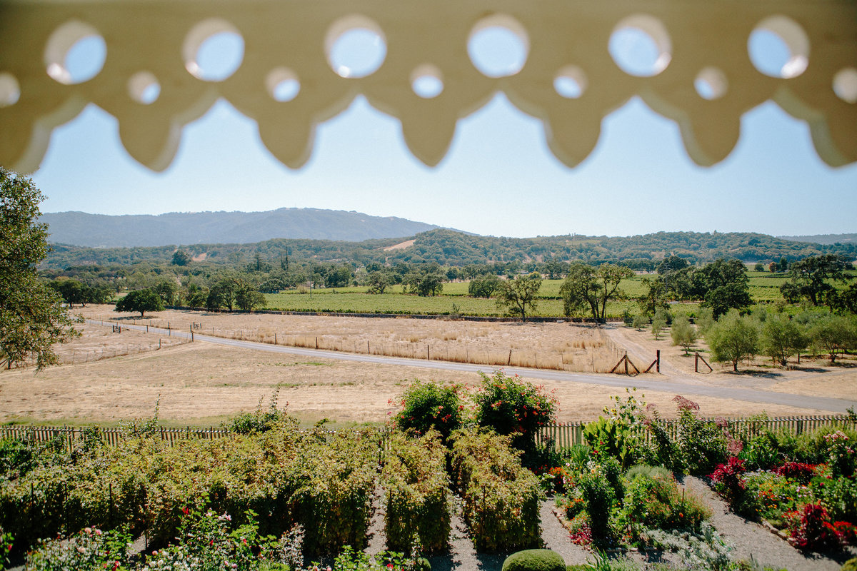 View from a wedding at Beltane Ranch, Sonoma..
