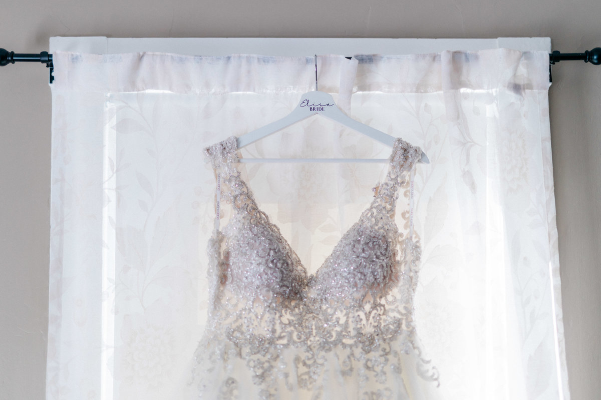 Historic Acres of Hershey wedding - bride's dress detail
