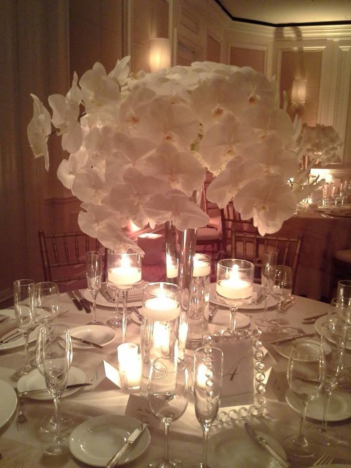 the Eau Palm Beach white phalaenopsis wedding