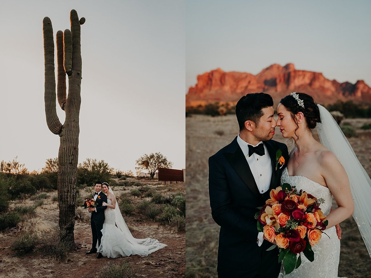 Bride and Groom stand next to saguaro in the Phoenix Desert