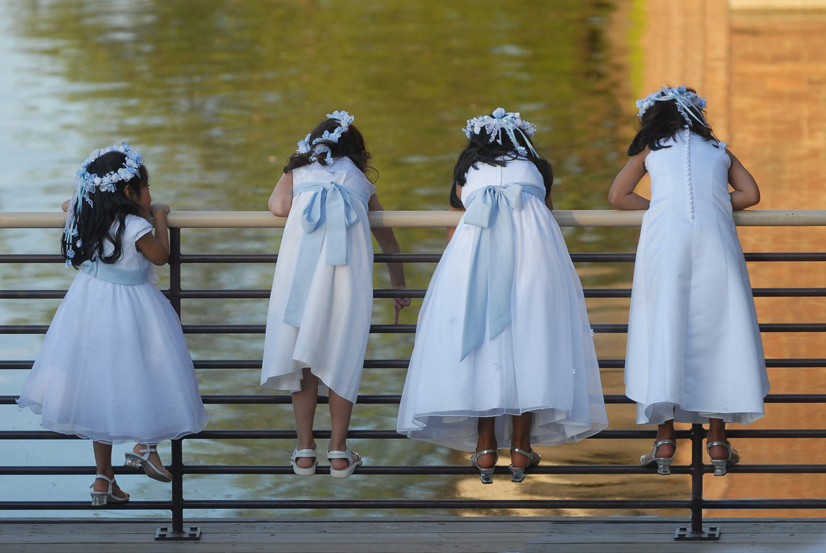 Four flower girls in white dresses climb a fence to peer at swimming fish in a pond