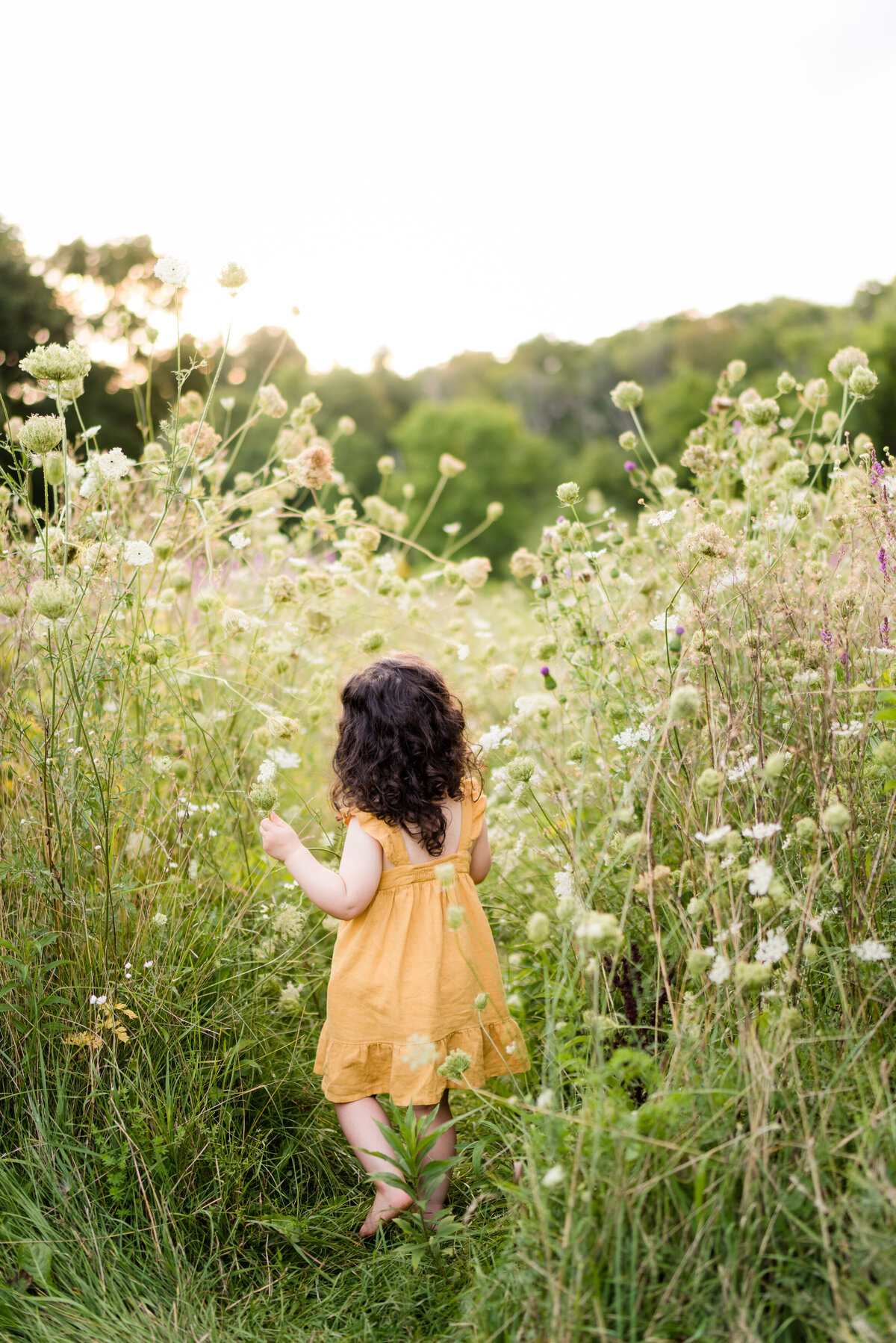 Boston-family-photographer-bella-wang-photography-Lifestyle-session-outdoor-wildflower-77