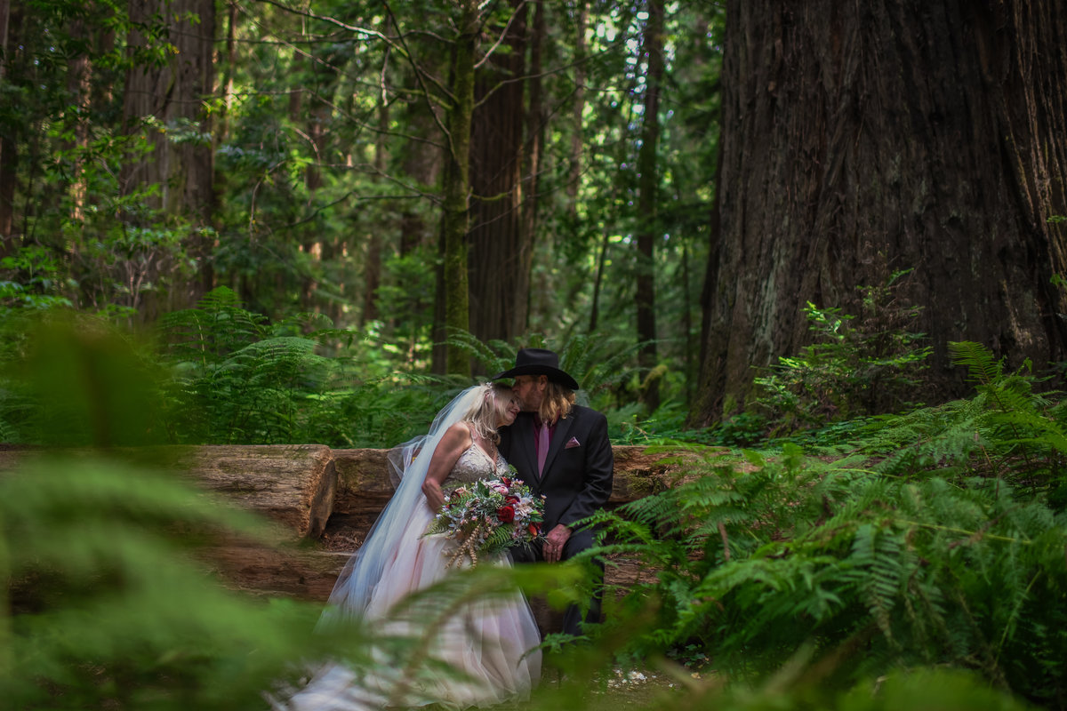 Redway-California-elopement-photographer-Parky's-Pics-Photography-redwoods-elopement-Avenue-of-the-Giants-Pepperwood-California-14.jpg