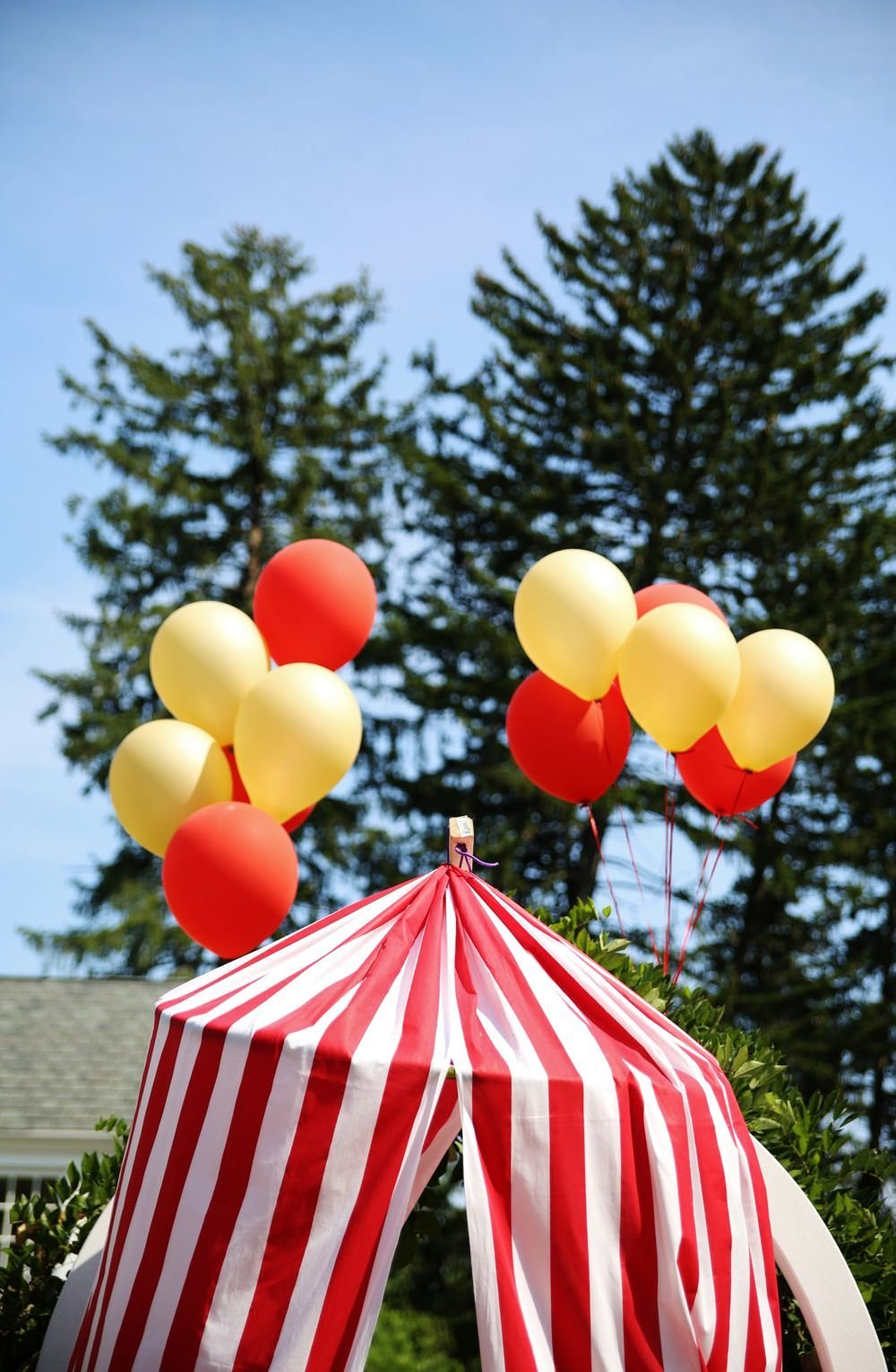 ct_party_planner_circus_birthday_0033