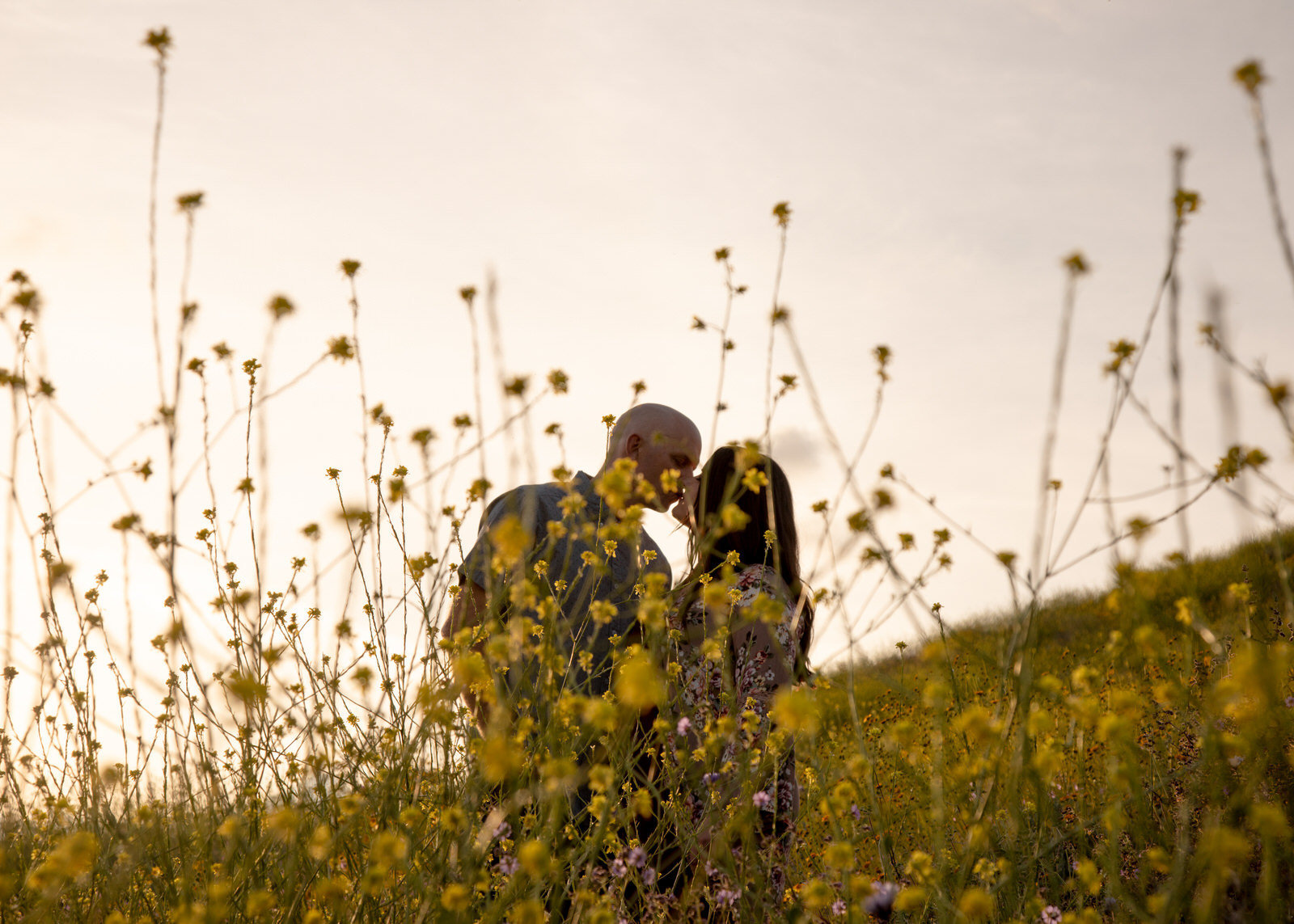 Couple kissing in a field of wild flowers during the super bloom in  Lake Elsinore, California