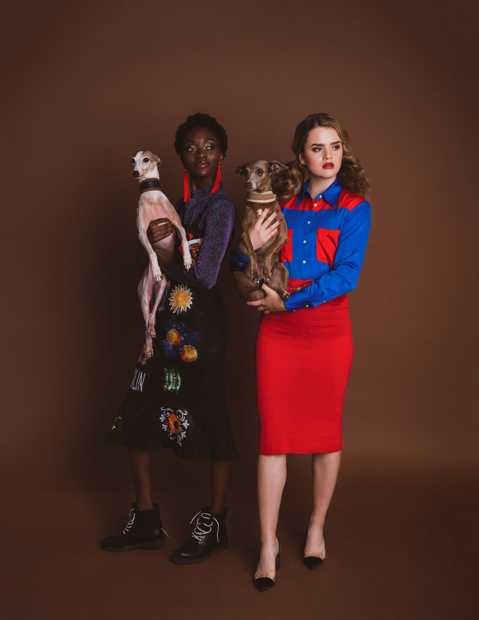 Dog-Fashion-Editorial-by-Brittany-Gawley-Photography-Westboro-Studio-22