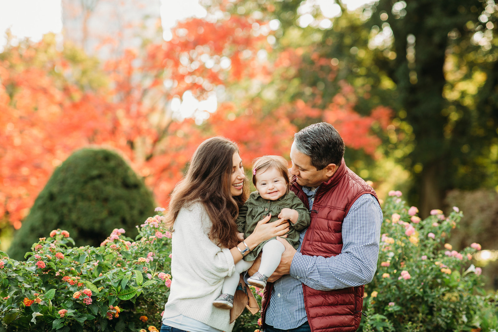 family kisses baby girl in front of red autumn tree in boston public garden