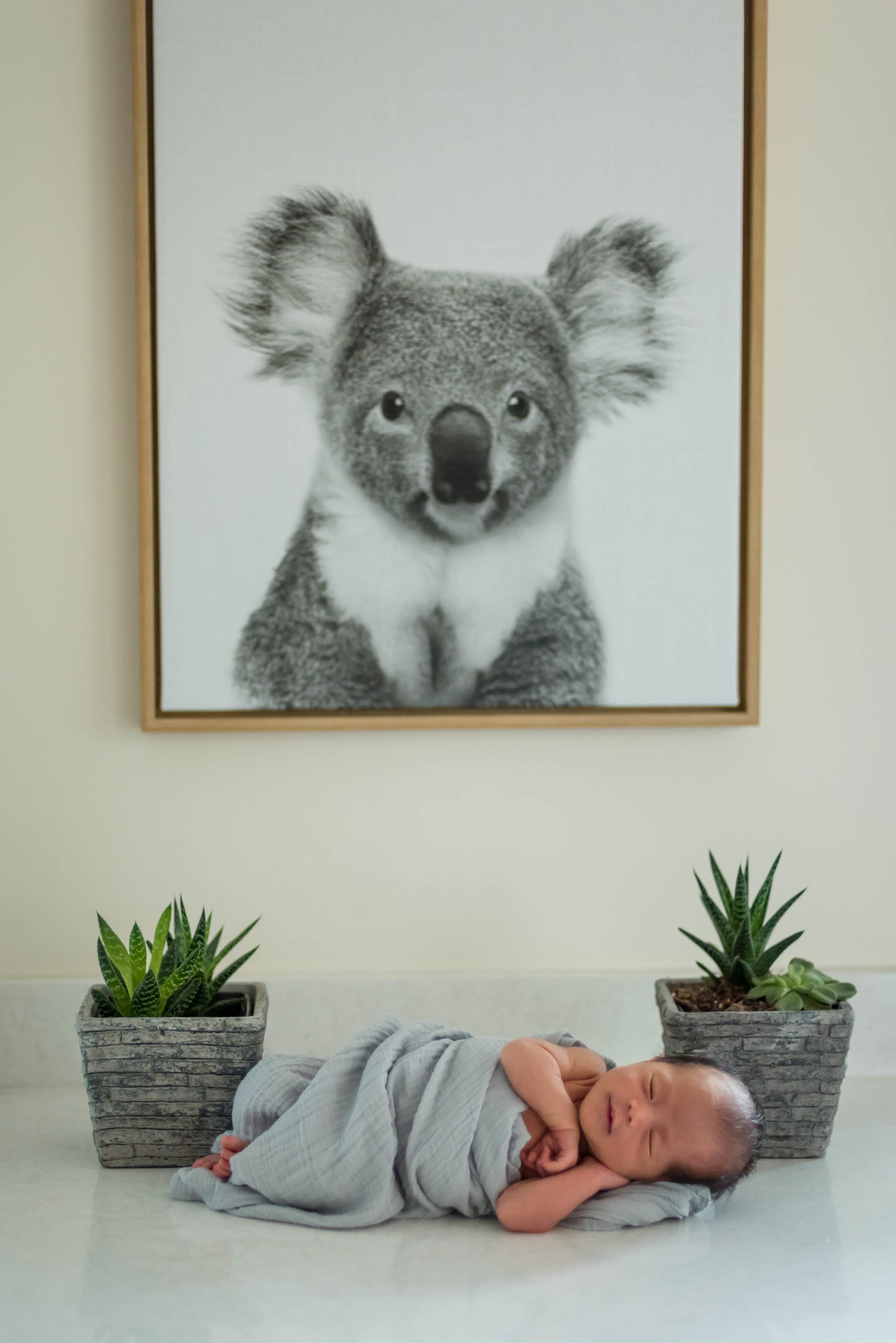 Boston-Newborn-Photographer-Lifestyle-Documentary-Home-Styled-Session-418