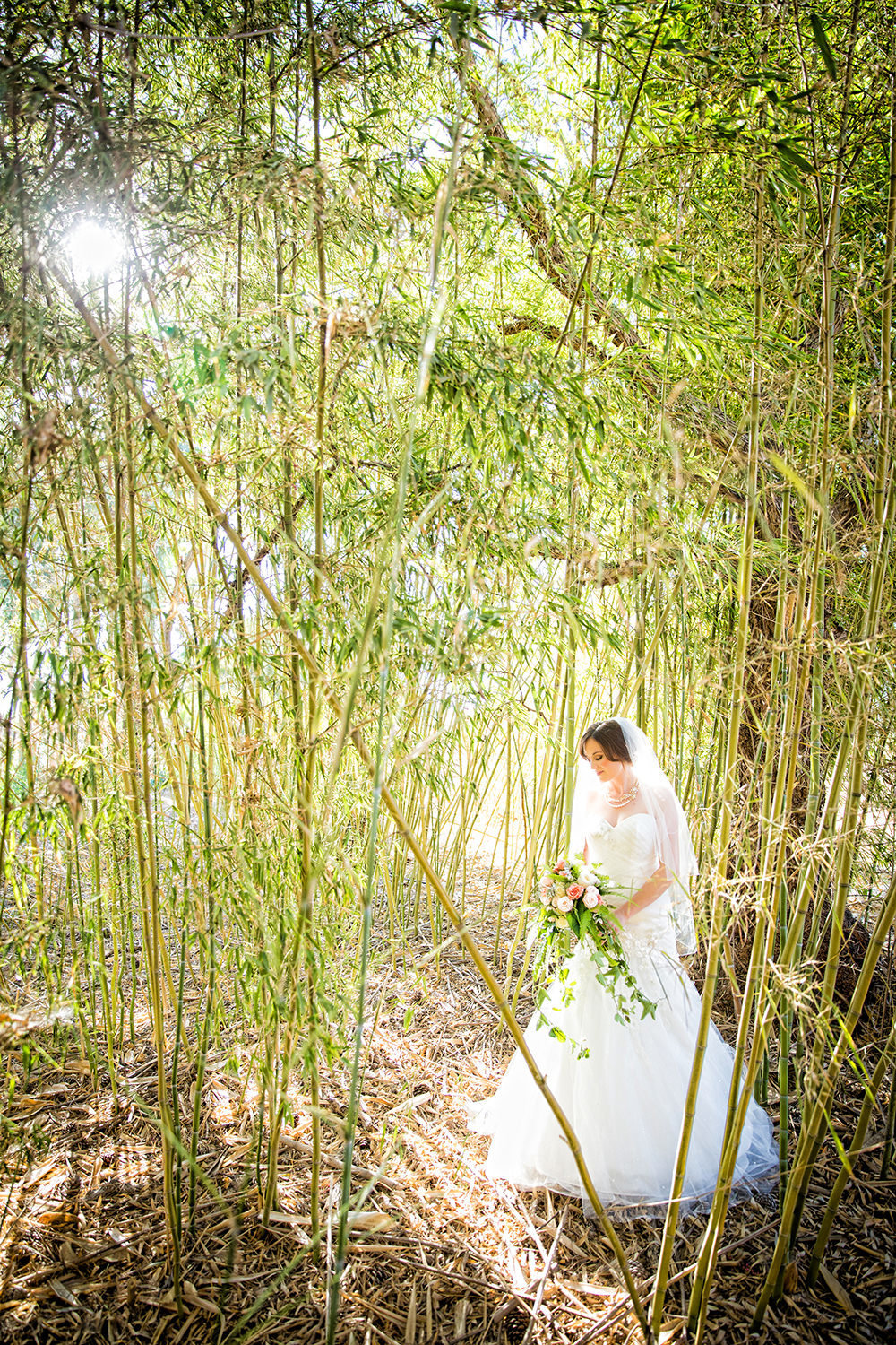 bride in bamboo field